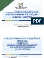 UNIDAD I 2019 (2)