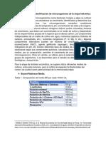 Metodologia de Identificacion de Hidrolisis