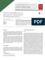 Resumen de la atención actual de quemaduras pediátricas gonzalez2015.pdf