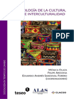 Sociologia de La Cultura