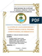 ENSAYO DE HABEAS DATA