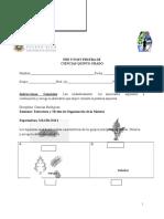 Pre Prueba Quinto Grado COTEJADO DE