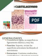 Tejido Conectivo2 nuevo.pptx