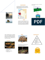 CULTURA TUMAQUEÑA.pdf