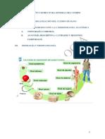 UD 1. ESTRUCTURA Y ORGANIZACIÓN GENERAL DEL CUERPO HUMANO.pdf