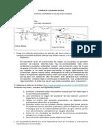 Evidencia 1 Transvesal SST (3) (1)