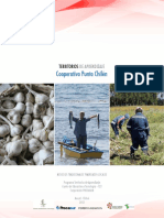 Cooperativa_Punta_Chilen.pdf
