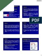 3-2 Ppt Fisiologia de Los Vasos Sanguineos 2018 II