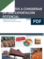 04. Elementos a Considerar en Una Exportación Potencial