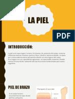 La piel.pdf