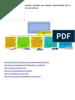 Mapa Conceptual entidades descentralizadas