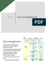 6 Gluconeogénesis