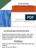 Kesehatan Reproduksi Remaja