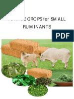 Forage crops