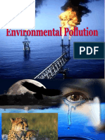 Environmental Pollution powerpoint