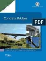 ConcreteBridges_Nov08