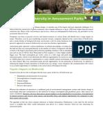 Fact Sheet Amusemt Parks_en (1)
