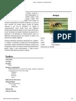 Avispa - Wikipedia, La Enciclopedia Libre