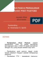 276223013-referat-hpp.pptx
