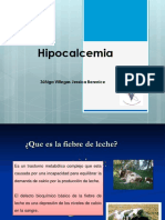hipocalcemia-131106032213-phpapp01