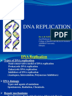 dnareplication-151218084840