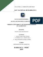 Informe-microbiologia de Alimentos
