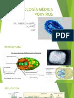 Pox Virus. Parvovirus