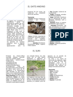 Animales de La Fauna de Tacna
