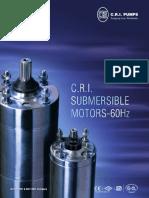 Deepwell Submersible Motor 60Hz