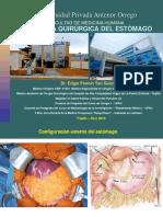 Carcinoma Gástrico 15.08.19