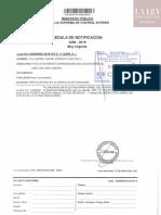 Cédula de Notificación-RafaelVela