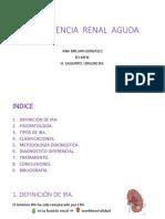 INSUFICENCIA RENAL AGUDA.pdf