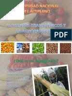TRANSGENICOS Y LA AGROINDUSTRIA.pptx