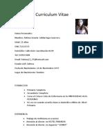 Curriculum Vitae00