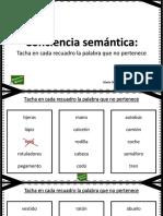 FICHAS DE CONCIENCIA SEMANTICA