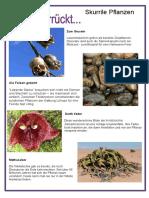 ganz-verruckt-skurrile-pflanzen-arbeitsblatter-einszueins-mentoring-leseverstandni_118012.docx
