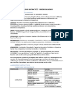 analisis morfosintactico.docx