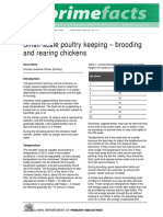 small-scale-brooding-rearing-chickens.pdf