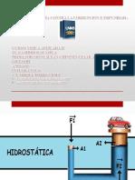 Fisica Aplicada,Hidroestatica..Ppt