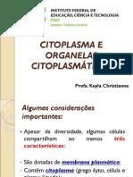 AULA- CITOPLASMA E ORGANELAS - ok.ppt