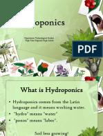 hydroponicshighpoint.ppt