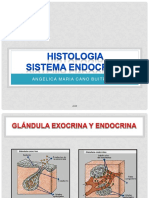 HISTOLOGIA- SISTEMA ENDOCRINO ACB - copia.pdf