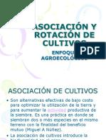 ASOCIACIÓN Y ROTACIÓN DE CULTIVOS.ppt