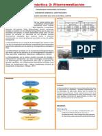 PRACTICA_2_FITORREMEDIACIÓN.docx