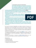INCONSISTENCIAS CONTROL INTERNO.docx