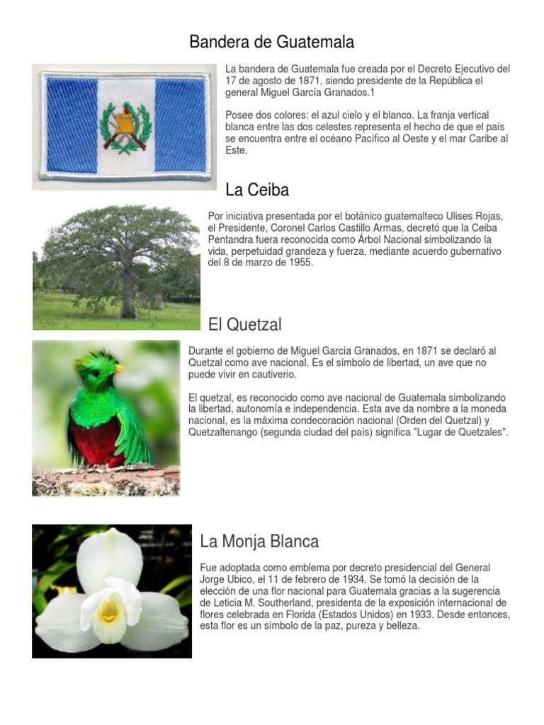 Bandera De Guatemala El Quetzal Guatemala