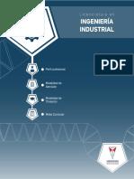 Pensum ingenieria industrial