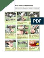 Reanimación Cardio Pulmonar Básica