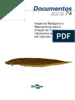 DOC74.pdf