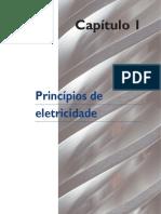 Capítulo 1 - Princípios de eletricidade.pdf
